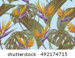 tropical flowers  jungle leaves ... | Shutterstock .eps vector #492174715