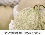 close up detail of multiple... | Shutterstock . vector #492177049