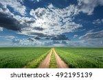 driving on an empty dirt road...   Shutterstock . vector #492195139