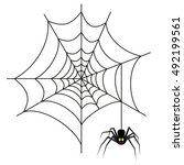 halloween spider on web... | Shutterstock . vector #492199561