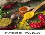 various spices selection. | Shutterstock . vector #492210109