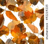 Imprints Autumn Leaves. Hand...