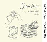 hand drawn vector illustration... | Shutterstock .eps vector #492219754