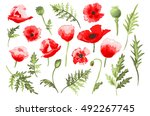 elegant decorative vector poppy ... | Shutterstock .eps vector #492267745