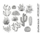 Cactus Collection. Sketchy...