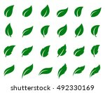 natural set of abstract green... | Shutterstock .eps vector #492330169