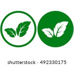 abstract green leaf icons on... | Shutterstock .eps vector #492330175
