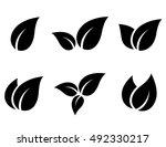 abstract set of black leaves... | Shutterstock .eps vector #492330217