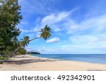 palm and tropical beach.... | Shutterstock . vector #492342901