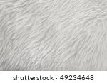 White Sheepskin Fur Texture...