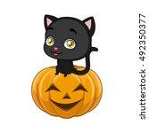 cute black cat sitting... | Shutterstock .eps vector #492350377