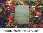 thanksgiving dinner. autumn... | Shutterstock . vector #492379909