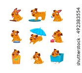puppy everyday activities... | Shutterstock .eps vector #492383554