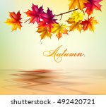 autumn background. leaves of... | Shutterstock .eps vector #492420721