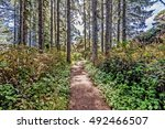 Hiking   Walking  On A...