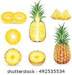 set of pineapple in various... | Shutterstock .eps vector #492535534