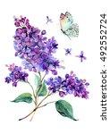 Watercolor drawing of beautiful ...