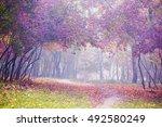 Beautiful Autumn Landscape....
