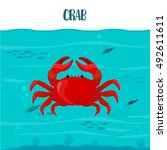 crab in the blue water with... | Shutterstock .eps vector #492611611