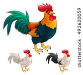 group of funny roosters in... | Shutterstock .eps vector #492620059