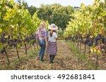 friends gathering fresh grapes... | Shutterstock . vector #492681841