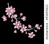 vector illustration. designer... | Shutterstock .eps vector #492692611