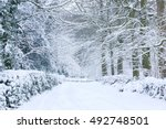 A Winter Scene During Snowy...
