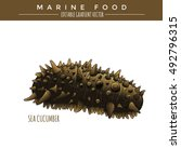 sea cucumber. marine food | Shutterstock .eps vector #492796315