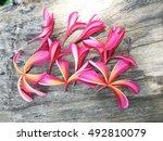 almeria | Shutterstock . vector #492810079