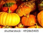 Pumpkin Patch Farm Series  ...