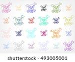 multicolored skulls on grey... | Shutterstock . vector #493005001