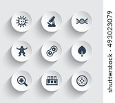 biology icons set  cell  test... | Shutterstock .eps vector #493023079