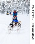 husky dogs are pulling sledge... | Shutterstock . vector #493161769