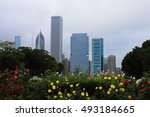 a view of chicago city center... | Shutterstock . vector #493184665