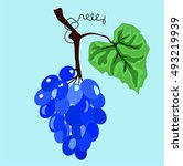 grapes on the branch | Shutterstock .eps vector #493219939