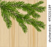 Two Green Spruce Branches On...