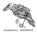 stylized crows. decorative bird....
