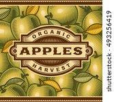 retro apple harvest label.... | Shutterstock .eps vector #493256419