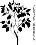 silhouette of lemon tree   Shutterstock .eps vector #493280947