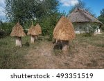 Ancient Wooden Bee Hives In Th...