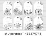 tropical cards collection.... | Shutterstock .eps vector #493374745