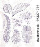 hibiscus  monstera ... | Shutterstock .eps vector #493374799