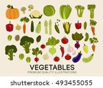 collection of premium quality... | Shutterstock .eps vector #493455055