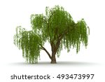 3d Green Tree Weeping Willow...