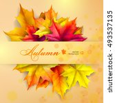autumn background. leaves of... | Shutterstock .eps vector #493537135