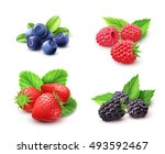 berry realistic set with... | Shutterstock .eps vector #493592467