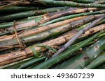 bamboo division   Shutterstock . vector #493607239