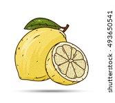 lemon fruit vector isolated set ... | Shutterstock .eps vector #493650541