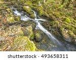 river | Shutterstock . vector #493658311