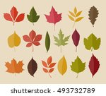 set of isolated autumn colored... | Shutterstock .eps vector #493732789